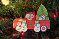 Truck Taking Home the Tree Family of 4