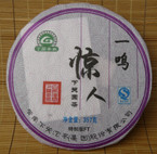 "2008 Xiaguan FT ""Instant Sensation"" Raw Pu-erh tea cake - 357 grams"