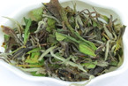 2011 Spring Organic-certified Imperial Shou Mei White Tea - 50 grams