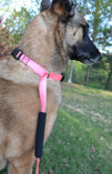 This is a pink leash with kushee collars and a grip on the leash portion for easy gripping.