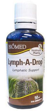 lymph-a-dropbiomed.jpg