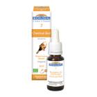 Biofloral No. 7 Chestnut Bud Organic Flower Essence Remedy 20 ml
