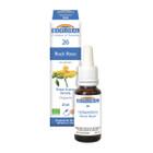 Biofloral No. 26 Rock Rose Organic Flower Essence Remedy 20 ml