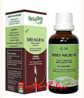 HerbalGem Gemmotherapy G34 Ribes nigrum 15 ml