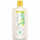 Andalou Naturals Sunflower & Citrus Brilliant Shine Shampoo 340 ml