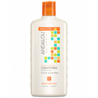 Andalou Naturals Argan Oil & Shea Moisture Rich Conditioner 340 ml