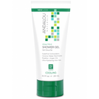 Andalou Naturals Aloe Mint Cooling Shower Gel 251 ml