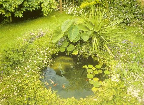 DIY How to install a preformed pond