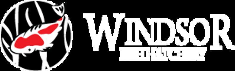 Windsor Fish Hatchery Online