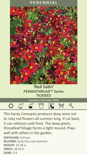 Red Satin' PERMATHREAD Series TICKSEED Coreopsis 'Red Satin' PPAF This hardy Coreopsis produces deep wine red to ruby red flowers all summer long. If cut back, it can rebloom until frost. The deep green, threadleaf foliage forms a tight mound. Plays well with others in the garden. EXPOSURE: Full Sun BLOOMS: Early thru Late Summer HEIGHT: 15-18 in SPACE: 18-22 in ZONE: 5-9
