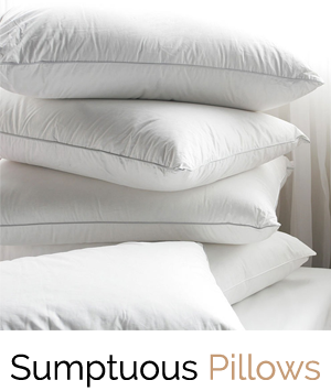 Sumptuous Pillows