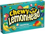 Tropical Lemon Head Lemonhead Candy 1 box 24 units