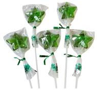 Bendy Pop Long Star Shaped Green Lollipop