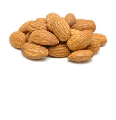 vitamin-e-photo-page.jpg