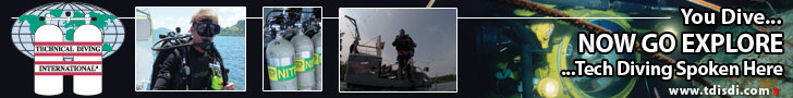 tdi-web-banner-728x90-2.jpg