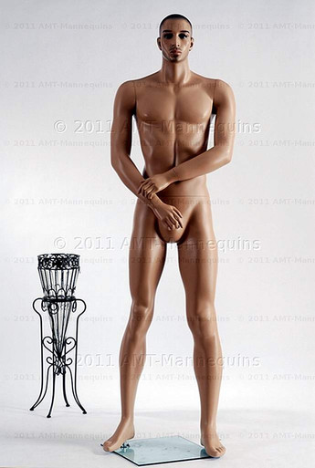In this full body view photo, naked mannequin Bill, stands with his legs even, his arms raised to his waist with his left hand almost touching his right arm.  Mannequin Bill can be displayed with or without a wig / hairpiece.  Glass stand and support hardware included.