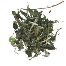 Bai Mu Dan Silver Tip White Tea