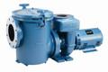 Pentair CSP/CCSP Comm Self-Priming Epoxy Coated Pump 15 HP 208-230/460v Three Phase