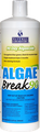 Natural Chemistry Algae Break 90® Algaecide Qt.
