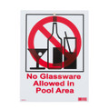No Glassware Allowed in Pool Area Sign SW-44