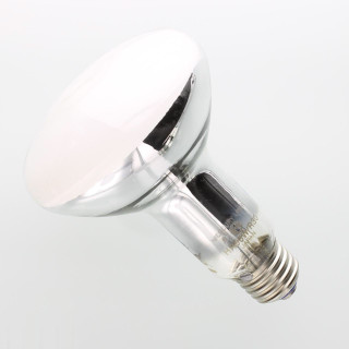 light bulb solutions dallas tx