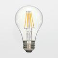 Satco S9252 6.5W A19 LED Filament Lamp