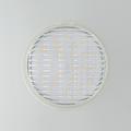 LED-5WPAR36SP Waterproof Screw Terminal PAR36 Spot Lamp