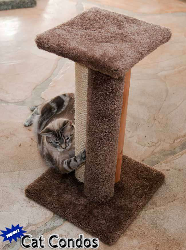 Triple Cat Scratcher - 110030