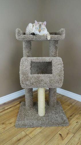 Premier Cat Climber Cat Tree