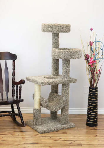 Large Cat Play Gym