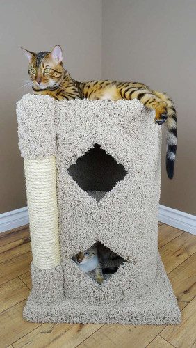 Premier 2-Story Solid Wood Cat Cavern