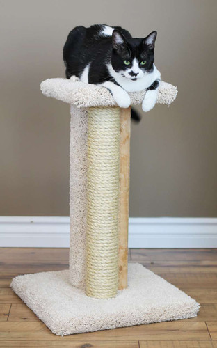Premier Triple Cat Scratcher