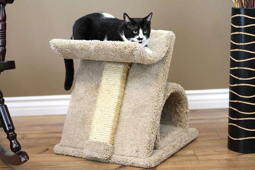 Premier Z Cat Scratcher