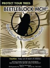 BeetleBlock_MCH