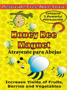 Honey Bee Magnet (2 pack)