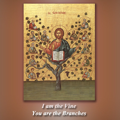 I Am the Vine, You are the Branches CD cover by Fr. Richard Clancy of the Archdiocese of Boston