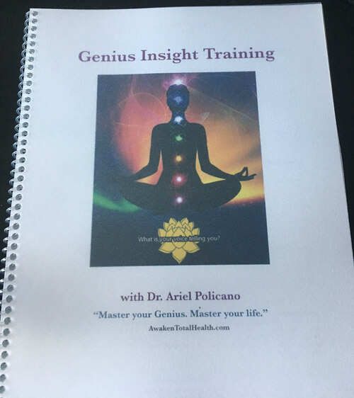 Genius Insight Mastery Guide includes training in all the basic functions of the program, the greater meaning of the items in each of the categories and strategies for balancing.
