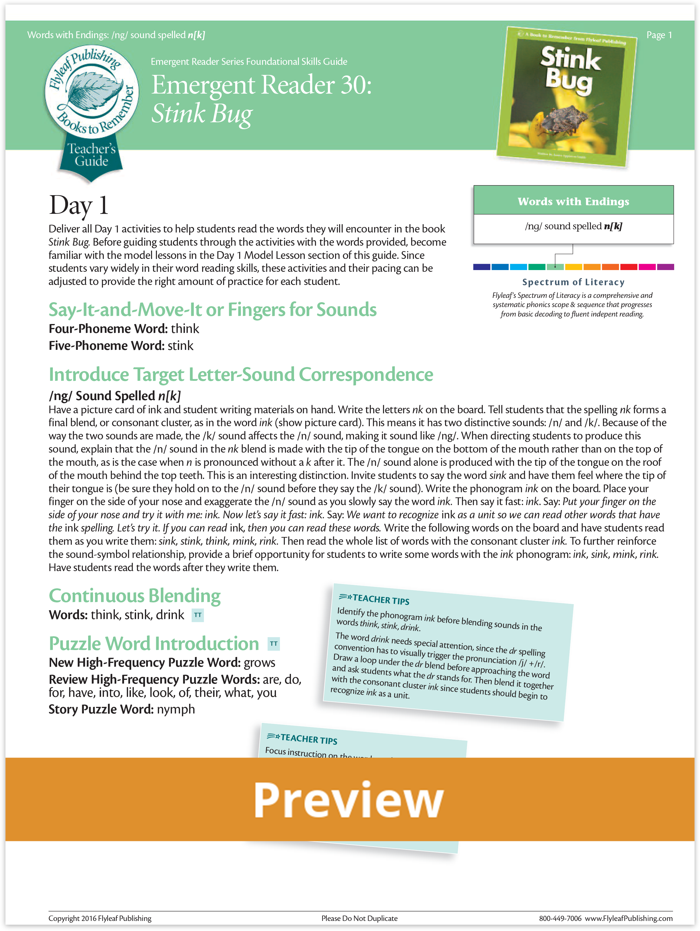 Stink Bug Foundational Skills Teacher's Guide Preview