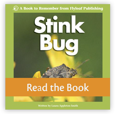 Stink Bug full decodable book preview