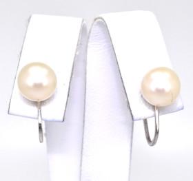 14K White Gold Pearl Non-Pierce Earrings 42000593