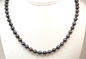 14K Yellow Gold Black Pearl Necklace 32000339