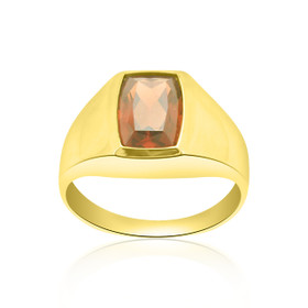 18K Yellow Gold Garnet Ring 12002493