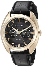 Citizen Men's BU4013-07H Stainless Steel and Leather Casual Watch