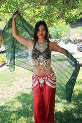 Belly Dance Costume 6 Piece Set - Green & Silver