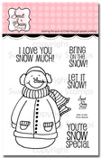Snow Special Clear Stamp Set