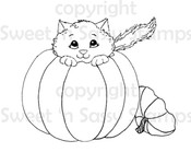 Pumpkin Kitty Digital Stamp