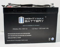 Mighty Max 12 v 100 ah rechargeable batteries, ML100-12