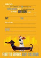 The Secret Life of Pets Invitations Birthday