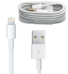 iPad Air 2/Air USB Cable 1 Meter