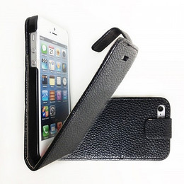 iPhone 5s protective cover